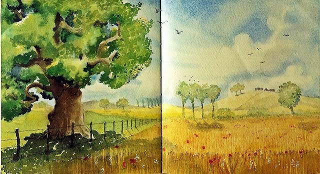 면지에 감춰진 그림책의 은밀한 이야기