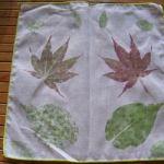 풀물염색 : 나뭇잎 손수건 만들기