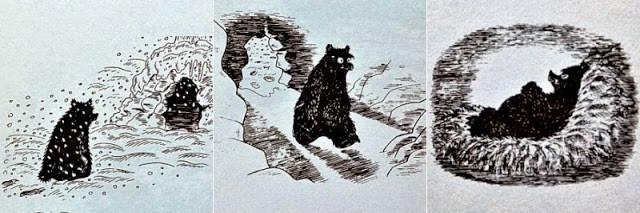 나는 곰이라구요!