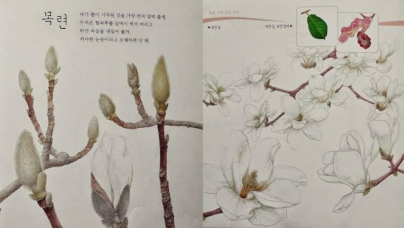 겨울눈아 봄꽃들아