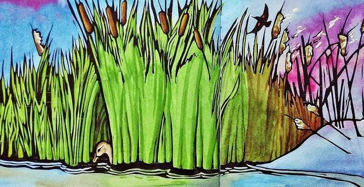 봄 여름 가을 겨울 연못 이야기