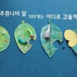 나비의 한살이 체험 놀이 : 배추흰나비 알 100개는 어디로 갔을까?