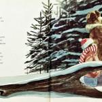 칼데콧상 수상작 : 부엉이와 보름달 (1988)