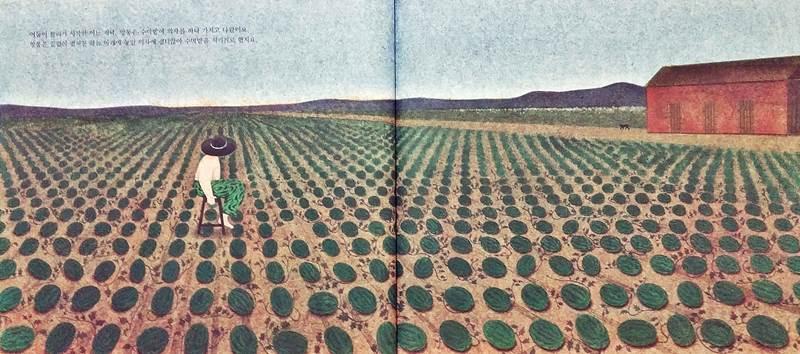 앙통의 완벽한 수박밭