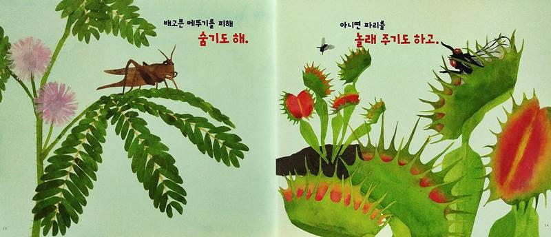 식물도 움직여?