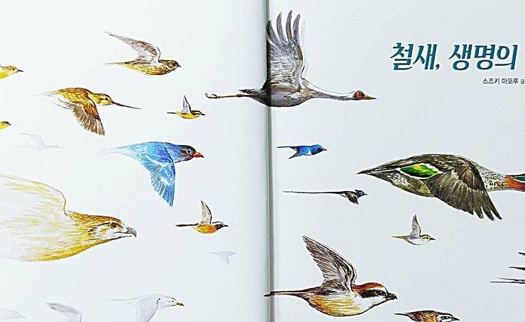 철새, 생명의 날갯짓