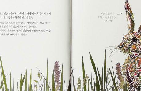 봄 여름 가을 겨울 : 꽃과 잎이 그려낸 사계절 이야기