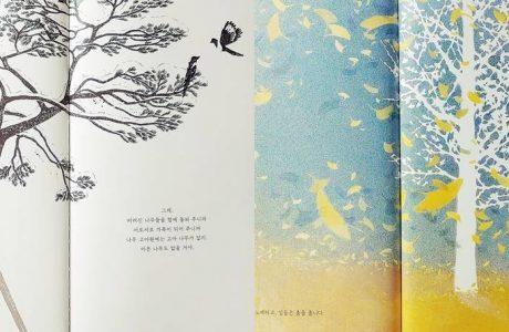 나무 고아원 vs 은행나무