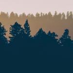 2021 가온빛 추천 그림책